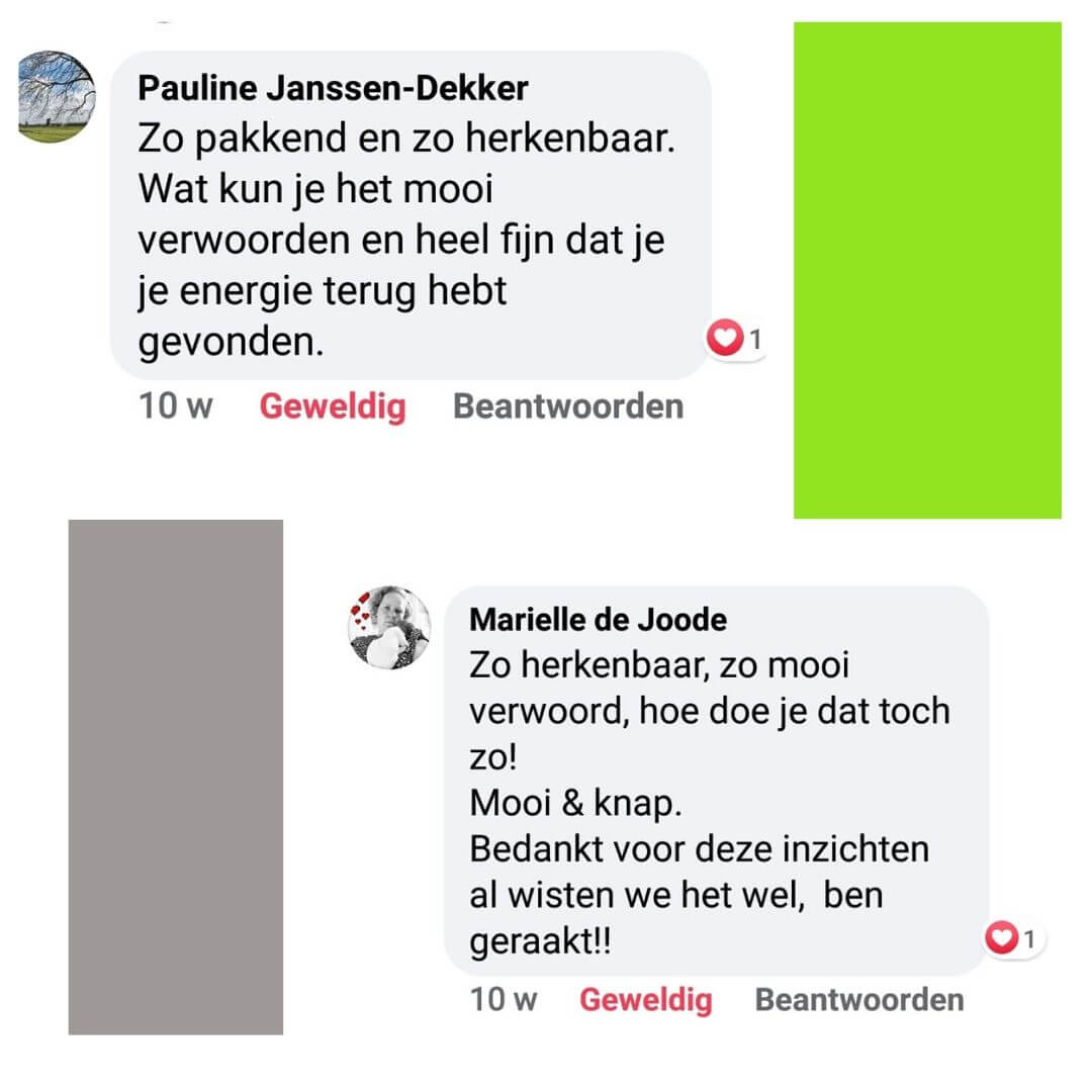 comments_socialmedia_groeienmetlef_hspcoach_hedy_9